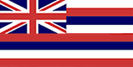 hawaii-flag-vsm.JPG